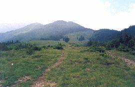 Widok na Smotrećia i łąki na których pasą się krowy i konie.