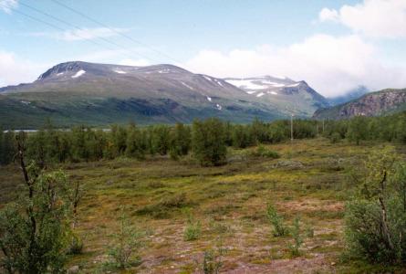 Laponia. Górska tundra w dolinie Ladtjovagge. Fot: Michał Sadowski